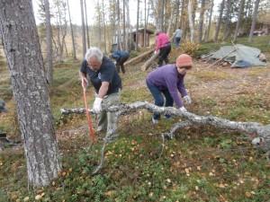 Rihmakurun piha-alueella sahattiin  kaatuneita puita ja pudonneita oksia, ja kasattiin niitä tulevia tulentekijöitä varten.
